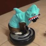 Gato con aspirador Roomba