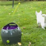 Lanza pelotas para perros