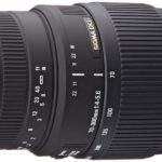 Sigma 70-300mm f/4.5-5.6 Macro