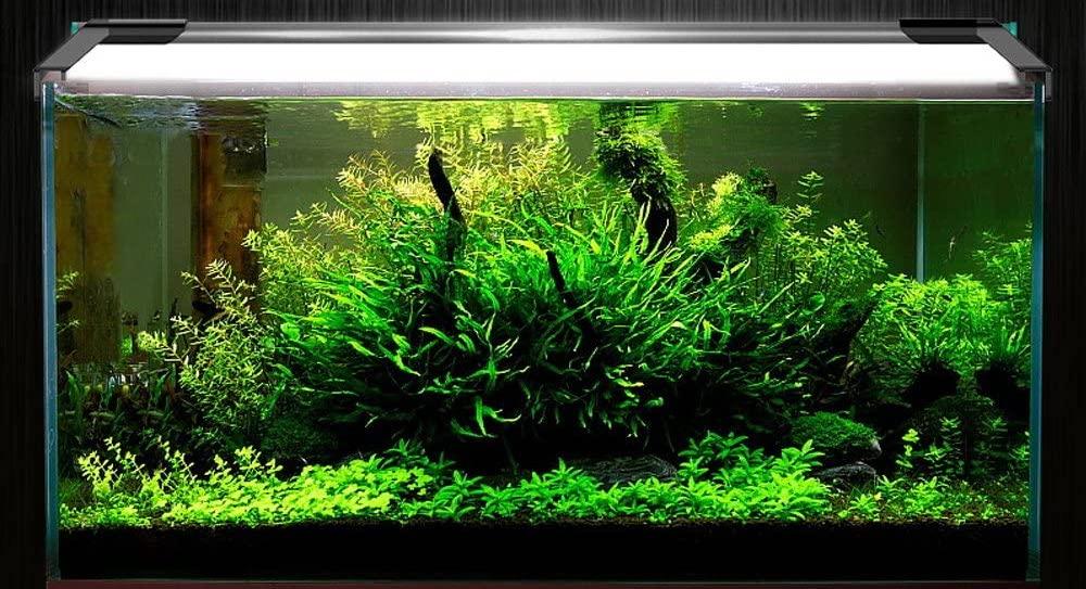 acuario con luz led